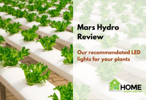 Mars Hydro Review