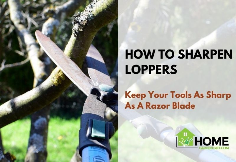 How To Sharpen Loppers Image