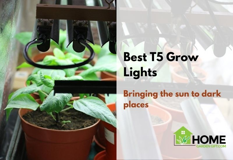 Best T5 Grow Lights